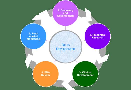 Drug-Development-Phases-Stages
