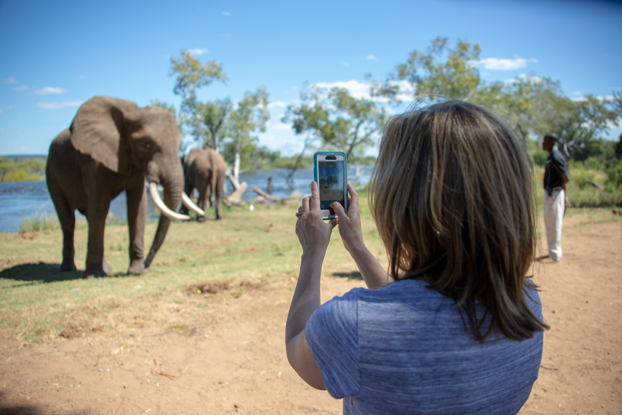 Woman taking picture during elephant safari on Corporate Incentive Trip | Global agency, BCD Meetings & Events